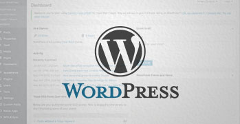 Why WordPress is the Best Platform for Any Business